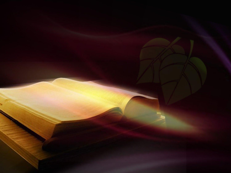 عبادة واستجابة