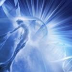 شركاء الطبيعة الالهية